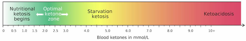 Nutritional ketosis bar showing range to ketoacidosis - Does a Carnivore Diet Put You in Ketosis