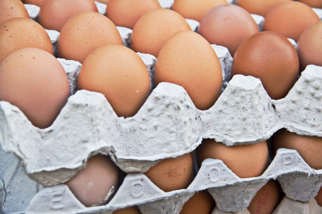 Eggs on the egg tray - Is a Chicken Egg Considered Carnivore? Are Eggs Meat?